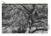Palo Verde In Black And White Carry-all Pouch