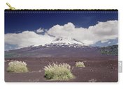 Pampas Grass And Old Lava Flow Llaima Carry-all Pouch