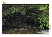 Panorama Of Wolf Creek At Letchworth State Park Carry-all Pouch