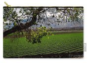 Panoramic Of Winter Lettuce Carry-all Pouch by Robert Bales