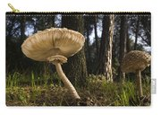 Parasol Mushrooms Pair In Forest Spain Carry-all Pouch