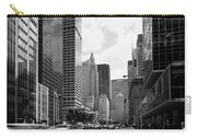 Park Avenue In New York City Carry-all Pouch