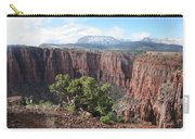 Parker Canyon In The Sierra Ancha Arizona Carry-all Pouch