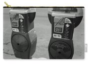 Parking Meters Carry-all Pouch