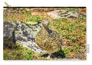 Partridge 1 Carry-all Pouch