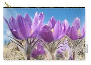 Pasque Flowers Close-up In Natural Environment Carry-all Pouch