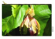 Passion Fruit 10-18-13 By Julianne Felton Carry-all Pouch