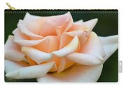 Pastel Peach Rose Carry-all Pouch