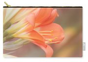 Pastels Carry-all Pouch by Kim Hojnacki
