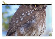 Patagonia Pygmy Owl Carry-all Pouch