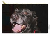 Patchwork Black Lab Smiling Carry-all Pouch