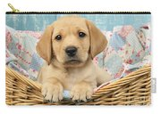 Patchwork Puppy Dp793 Carry-all Pouch
