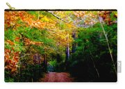 Paths We Choose Carry-all Pouch