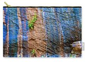 Pattern On Wet Canyon Wall From River Walk In Zion Canyon In Zion National Park-utah  Carry-all Pouch