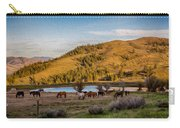 Patterson Mountain Afternoon View Carry-all Pouch