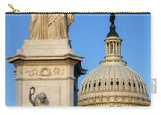 Peace Monument And Capitol Carry-all Pouch
