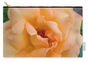 Peach Enchantment Carry-all Pouch