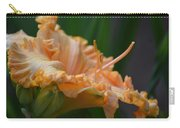 Peach Rufflette - Lily Carry-all Pouch