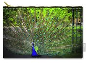 Peacock Beauty 3 Carry-all Pouch
