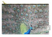 Peacock Bow Carry-all Pouch
