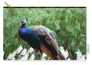 Peacock On A Rock 1 Carry-all Pouch