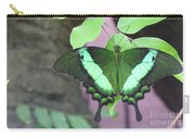 Peacock Swallowtail Carry-all Pouch