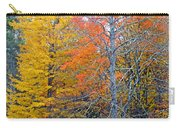 Peak And Past Foliage Carry-all Pouch