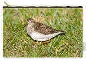 Pectoral Sandpiper Carry-all Pouch