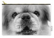Pekingese Puppy Carry-all Pouch