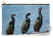 Pelagic Cormorants Carry-all Pouch