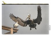 Pelican Wins Sea Gull Looses Carry-all Pouch