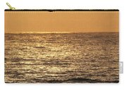 Pelicans Ocean And Sunsetting Carry-all Pouch