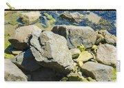 Pembroke Rock Carry-all Pouch