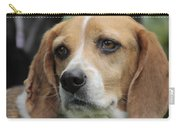 The Beagle Named Penny Carry-all Pouch