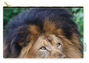 Pensive Lion Carry-all Pouch