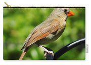 Perched Cardinal Carry-all Pouch