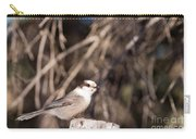 Perched Grey Jay Perisoreus Canadensis Watching Carry-all Pouch