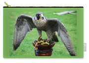 Peregrine Falcon # 1 Carry-all Pouch