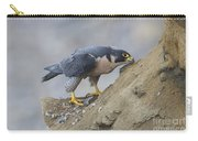 Peregrine Cleaning Beak Carry-all Pouch