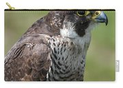 Peregrine Falcon 1 Carry-all Pouch