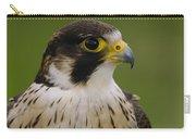 Peregrine Falcon Portrait Ecuador Carry-all Pouch