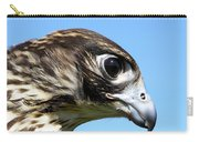 Peregrine Falcon Tashunka Carry-all Pouch
