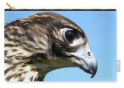 Peregrine Falcon Tashunka Carry-all Pouch