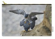 Peregrine Falcons Mating Carry-all Pouch