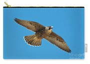 Peregrine Young Screaming For Food Carry-all Pouch