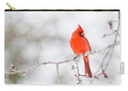 Perfect Cardinal Carry-all Pouch