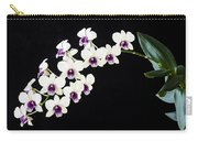 Perfect Phalaenopsis Orchid Poster Carry-all Pouch