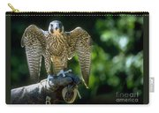 Perigrine Falcon Carry-all Pouch