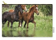 Peruvian Paso Reflections Carry-all Pouch