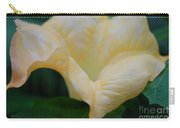 Petal Pillows By Jrr Carry-all Pouch
